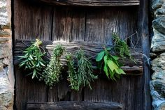 Can't tell what I like the best~the herb swag or the OLD DOOR!