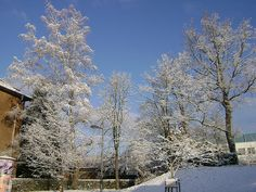 University of Saarland under the snow