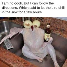 Let the bird chill in the sink... Lol