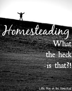 Homesteading...What the heck is that?