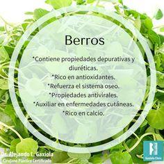 Hoy es miércoles de #información acerca de los alimentos. Conoce los beneficios de consumir #berros. Una excelente opción para tu ensalada.