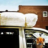 Grab-N-Go Prioritized Evacuation List