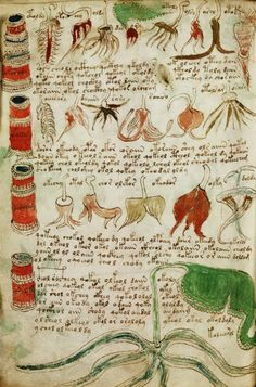 Manuscrito Voynich. El libro indescifrable