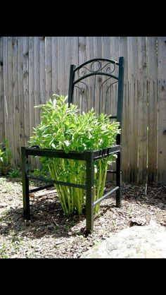 Trellis Ideas For Your Garden old chair used as a garden trellis for peonies What a tidy idea! May have to do this one since I broke my chair when I fell thres it today.old chair used as a garden trellis for peonies What a tidy idea! Garden Yard Ideas, Garden Crafts, Lawn And Garden, Garden Projects, Garden Landscaping, Garden Decorations, Yard Art Crafts, Recycled Garden Art, Garden Web