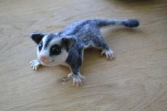 Hey, I found this really awesome Etsy listing at https://www.etsy.com/listing/195654743/needle-felted-animal-felted-sugar-glider