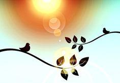 Větev, Pták, Twitter, Sun, Přání