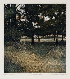 Artwork page for 'Woodshade', Philip Greenwood, 1977