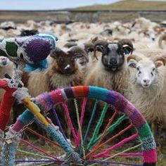 Stitchtopia Knitting Holidays