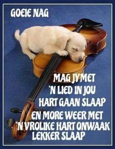 Good Night Wishes, Good Night Quotes, Good Morning Good Night, Goeie Nag, Godly Man, Special Quotes, Strong Quotes, Afrikaans, Qoutes