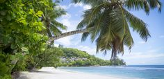 Top 5 Places to Visit in Seychelles