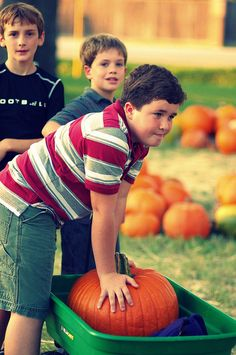 Work at the Pumpkin Patch.