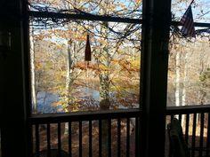 Warm Fall day in November!