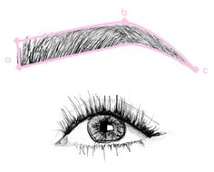 People often overlook their eyebrows as an important part of their appearance, which is a huge shame, really. When you have full, well-groomed brows that are sha...