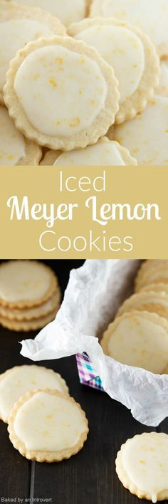 The perfect winter citrus cookies to satisfy those bright sunny cravings! These Iced Meyer Lemon Cookies just the thing to cure those wintertime blues.(Baking Cookies From Scratch) Meyer Lemon Recipes, Citrus Recipes, Lemon Dessert Recipes, Sweet Recipes, Baking Recipes, Cookie Recipes, Bar Recipes, Cupcake Recipes, Yummy Recipes