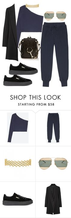 """""""Untitled #3812"""" by dkfashion-658 ❤ liked on Polyvore featuring Christian Dior, Puma, The Row and Chloé"""