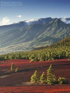 Uno splendido e maestoso paesaggio a La Palma #canarie