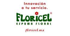 Tweets con contenido multimedia de Espuma floral (@espumafloral) | Twitter