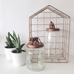 Allerlievelings animal jar