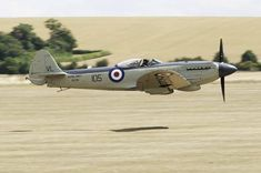 Seafire with a Rolls Griffin... beautiful