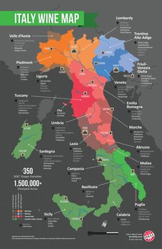 Italy wine map. Extra points 'cause it labels the reds in one shade and the whites in another for quick reference by region.