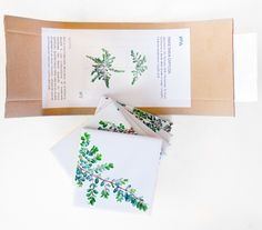 print on ceramic tiles #packaging #spontecollection #ceramictiles #tiles  #plants #interiordesign #design #arredamento #livorno #italy