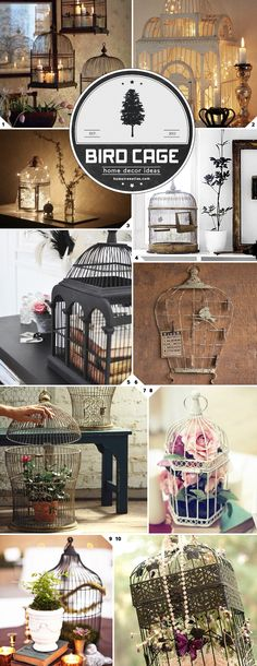Beautiful There is something special about adding a bird cage into the decor mix of a room. I'm not sure what it is yet, maybe it is the informal bohemian vibe, the Victorian feel, or what it repr . Vintage Birds, Vintage Decor, Do It Yourself Home, Creative Home, Home Decor Accessories, Bird Houses, Home Interior Design, Diy Home Decor, Decor Ideas