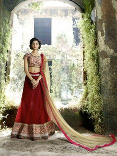 Red Net Lehenga Choli with Embroidery Work
