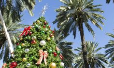 Are you prepared for a green Christmas or beach front family celebration? Well, throwing a holiday in Florida is exactly that, fun in the sun. Green Christmas, Christmas 2014, Christmas Bulbs, Xmas, Maria B, Coral Gables, West Palm Beach, Florida Holiday, Holiday Parties