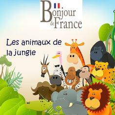 Les animaux en français - Intermédiaire - Vocabulaire Français French Kids, French Summer, French Class, French Lessons, How To Speak French, Learn French, Creative Teaching, Student Teaching, French Resources