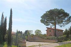 #aziendaagricola  in zona #Scansano con #vigneti e #uliveti vera occasione ! www.villainversilia.it