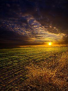 Spring Light | Flickr - Photo Sharing!❤️