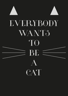 Font: Glamor by Hendrick Rolandez Phrase: Title from the song featured in Disney's The Aristocats About the font: Isn't it beautiful? I think I've already mention how I'm a big fan of fonts with contrast in thickness, in fact one of my fave type. Crazy Cat Lady, Crazy Cats, Cool Cats, I Love Cats, Cat People, Cat Quotes, All About Cats, Cat Life, Cats And Kittens