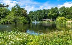 A lake at St James Park