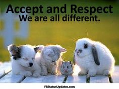 Respect Quotes | accept and respect – quotes about respect