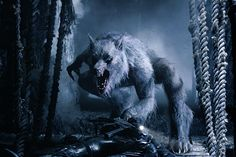 story of werewolf