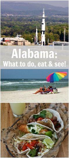 Alabama Roadtrip - A Turtle's Life for Me