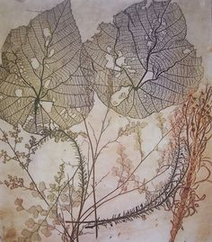 artpropelled:  Nature Etching by Jet James