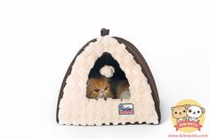 awesome HOOPET Foldable and Washable Warm PV Velvet Cat Castle Dog Cat Puppy House Litte Dogs Tent Shape House
