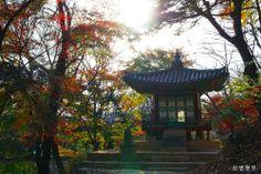 창덕궁[Changdeokgung Palace Complex] - 승재정