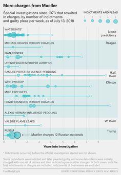 The Mueller Investig