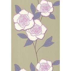 Cole And Son Paper Rose Wallpaper in Lilac