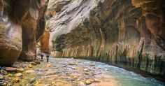 A Mesmerizing Experience Hiking The Narrows in Zion National Park
