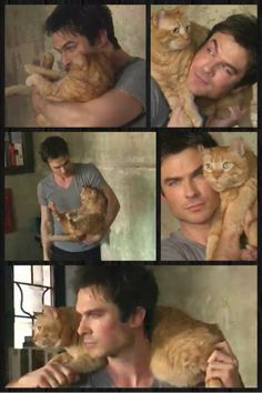 I can't decide if I love the cat or Ian Somerhalder more in this picture.......