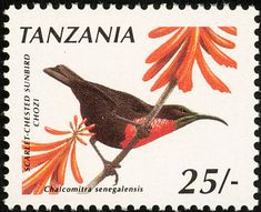 Scarlet-chested Sunbird stamps - mainly images - gallery format