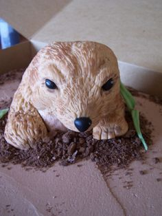 Groundhog Cake Idea