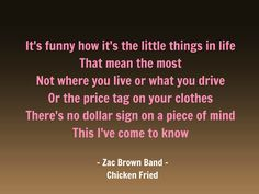 Zac Brown Band Chicken Fried - Country Love!