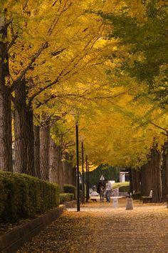 UTUNOMIYA EKI HIGASHI Park