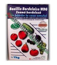 Tratamente de toamna si iarna la pomi fructiferi - Blog-ul SemintePlante.ro