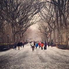 Life is like a walk through the park. Will you enjoy the scenery or bitch about how cold it is?  Find more social and visual inspiration for change agents by searching for #DigitalDash on major social networks. #strollwithme