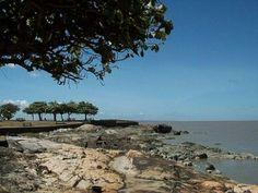Que peut-on faire en Guyane ? Découvrir Cayenne et la Pointe des Amandiers !